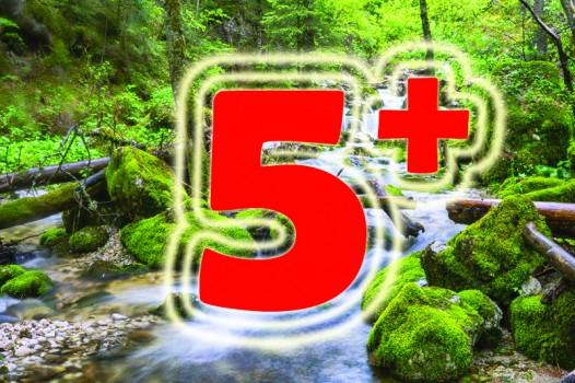 5+ PACKAGE